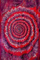 Spiralhaut1