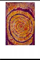 Spiralhaut2